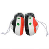 AXS Mini Boxing Gloves- Syria
