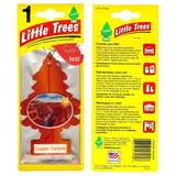 Little Trees Copper Canyon Car Air Freshener