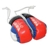 Boxing Gloves -Cambodia One Pair